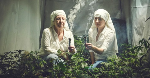 TW_nuns-grow-marjuana01-001_670