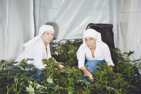 TW_nuns-grow-marjuana05_670